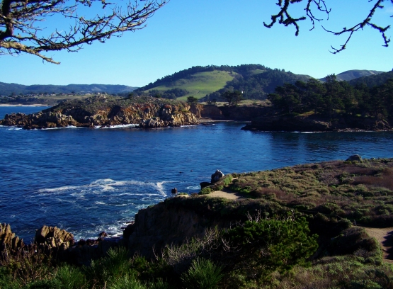 Point Lobos 1